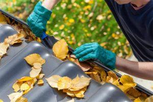 herfstbladeren in de dakgoot